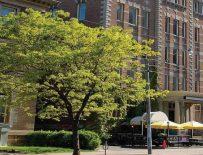 Braemar College, Торонто