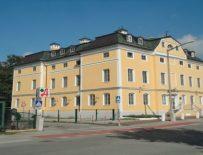 American International School, Зальцбург