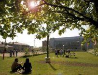 Griffith College, Дублин, Корк и Лимерик